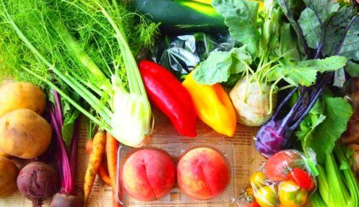 野菜は下ごしらえして保存するの?冷凍保存や電子レンジを使った下ごしらえの方法もご紹介!